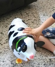Jazeel-with-cow-balloon